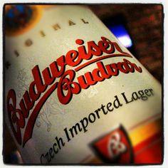 Budweiser Czech Beer
