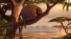 ROLLIN' SAFARI - 'Sleeping Beauty' - Official Trailer ITFS 2013 by ROLLIN' WILD. A common wildlife scene: A leopard taking a nap.