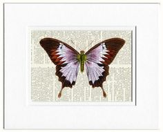 butterfly - violet lavender vintage artwork printed on old dictionary page via Etsy