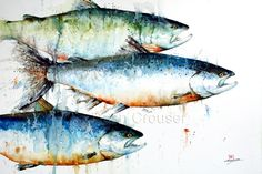 SALMON Watercolor Fish Art Print by Dean Crouser by DeanCrouserArt