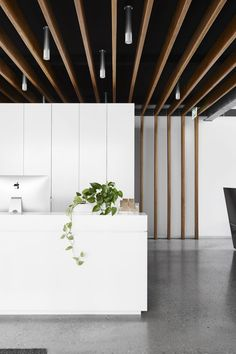 Studio Nine Architects - Studio Nine Architects Architects, Studio, Projects, Room, Furniture, Home Decor, Log Projects, Bedroom, Rum
