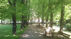 "W parku za CK Zamek | In the park behind the Cultural Centre ""Zamek"""