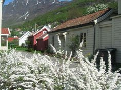 We're staying in this village of Aurland one night.