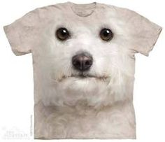 Big Face T-Shirts The adorable Bichon Frise Dog Face T-Shirts Zebras, T Shirt Chien, Bichons, Biker, Big Face, 3d T Shirts, Funny Shirts, Lap Dogs, Mountain Dogs