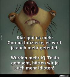 Just Smile, Funny Moments, True Stories, Proverbs, Wise Words, Decir No, Funny Animals, Haha, Comedy