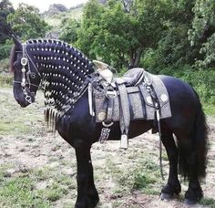 The black horse armor Most Beautiful Horses, Pretty Horses, Horse Love, Animals Beautiful, Cute Animals, Arabian Horse Costume, Horse Costumes, Medieval Horse, Horse Braiding