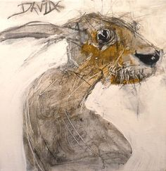 Valerie Davide.  Poor rabbit looks like it needs an Ativan.