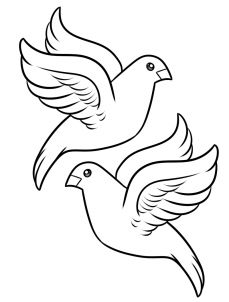 How To Draw Turtle Doves Step 6