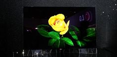 LG Flexible UHD 4K Smart OLED TV Flexibility, Tv, Painting, Back Walkover, Television Set, Painting Art, Paintings, Painted Canvas, Drawings