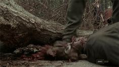 The_Walking_Dead_Smash_Head.gif (500×281)