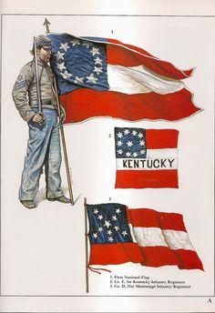 Confederate battle flags                                                       …