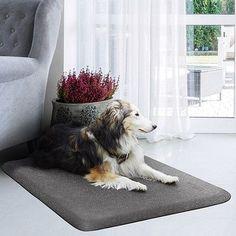 """WellnessMats Pet Mat Color: Silver Haven, Size: Medium: (34"""" L x 20"""" W)"""