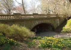 Guide of what to see in Central Park NYC
