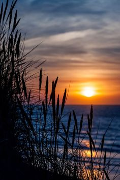 Sunset ~ Beach of La Digue du braek of Dunkerque, France | Photography by Dubus Laurent