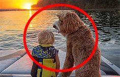 La emocionante amistad de un niño y su perro: Te conmoverás hasta las lágrimas | Virales