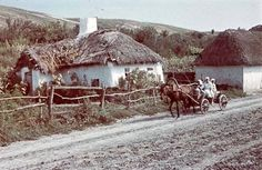 Amazing Color Photographs of Everyday Life in Ukraine in 1942 Vernacular Architecture, Ukrainian Art, Vintage Colors, World War Two, Views Album, Old Photos, The Past, Cabin, Black And White