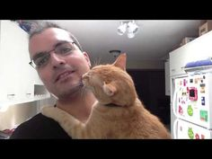 For People Who Think Cats Don't LOVE <3 Like We Do… | The Animal Rescue Site Blog