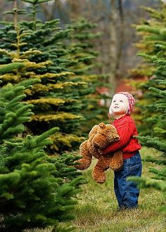 larger than life.at the Christmas Tree Farm.....