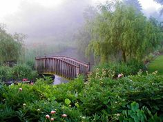beautiful garden and bridge - Beautiful Garden Pictures