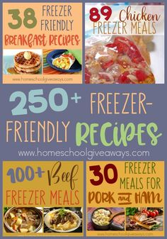 Freezer Meals are wonderful to have on hand for busy nights, during sickness, after the birth of a child or even during the holidays when family is visiting. Whatever the occasion, these Freezer-Friendly Recipes are sure to please everyone in your hou Budget Freezer Meals, Make Ahead Freezer Meals, Crock Pot Freezer, Dump Meals, Crockpot Meals, Freezer Recipes, Freezable Meals, Freezer Friendly Meals, Freezer Meals Healthy