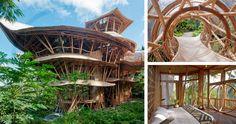 Laura Hardy a grandi à Bali - Après être restée 10 ans à New York, elle est donc retournée à Bali et a créé la société Ibuku pour construire des maisons en bambou afin de prouver que le bambou est un matériau approprié pour la construction.