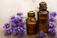 Lavender Is Effective Against Drug Resistant Staph Infection