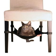Cat Crib Black, $26, now featured on Fab. @Tiffany Carter HOLY CRAP you should get one of these for Cleo!
