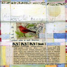sarah-ahearn-scarlet-tanager.jpg 498×500 pixels
