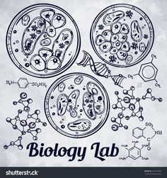 Hand drawn science bio viral laboratory icons sketch set. Bacteria, atoms, DNA, petri dish. Vector illustration.Back to School. Doodle lab equipment. Ink on grunge paper . Biology micro elements.