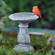 Miniature Dollhouse FAIRY GARDEN ~ Cardinal Birdbath ~ NEW Miniature cardinal for centerpiece with fawn