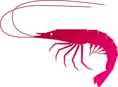 pink shrimp cartoon stock photos images pictures 40 images rh pinterest com Shrimp Logos Clip Art Shrimp Drawing