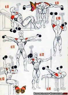 Body Building Workouts <br> Bodybuilding muscle workout using different workout techniques like uni-set, multi-set, pyramid routines, super breathing sets and much more. Choose an effective workout that suits your lifestyle.