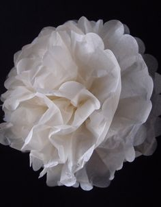 EZ-Fluff 8 Inch White Tissue Paper Pom Pom Flowers, Hanging Decorations PACK) Fluffy Wall Backdrop Decorations On Sale Now! Pom Pom Flowers, Tissue Pom Poms, Paper Pom Poms, Giant Paper Flowers, Tissue Paper, Pom Pom Centerpieces, Pom Pom Decorations, Backdrop Decorations, Wedding Decorations
