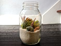 Today we look at ways to make your very own unforgettable bonsai terrarium plants. The picture Bonsai Terrarium plant here offers you a sense of the scale, and we're sure you want to have it for your home decor. Mini Terrarium, Mason Jar Terrarium, How To Make Terrariums, Air Plant Terrarium, Custom Mason Jars, Mason Jar Diy, Window Plants, Air Plants, Air Plant Display