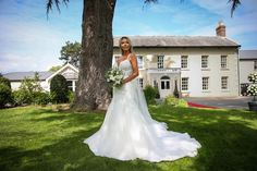 Special Day, Wedding Venues, Wedding Inspiration, Weddings, Wedding Dresses, Fashion, Wedding Places, Bridal Gowns, Bodas