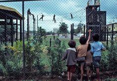 Susan Meiselas. NICARAGUA. 1978. EEBI (Basic Infantry Training School).