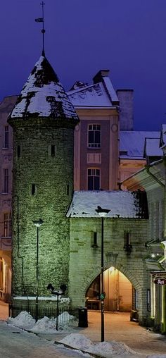 Tallinn  Estonia  जानकारी के लिए साइट पर पहुंचें   https://storelatina.com/estonia/travelling  #爱沙尼亚 #playa #Estonie #detox