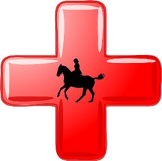 We all know having a First Aid Kit for our horse is important. But what should it consist of?