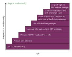 How Epstein Barr Virus (EBV) causes autoimmune, and how to treat or inhibit it