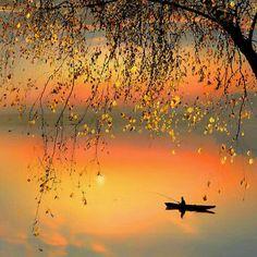 ##Goodmorning ##friends ##beautifullday ## ##amazing ##beautiful ##nature ##photography - Vera Amorim - Google+