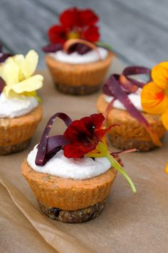 Earthsprout – Go Green Hot´n Healthy » Fall oh la la & Raw Carrot Cardamom Cupcakes » Earthsprout - Go Green Hot´n Healthy