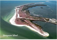 Honeymoon Island State Park, Pinellas County, FL Florida Girl, Florida Vacation, Florida Travel, Florida Beaches, Venice Beach Florida, Honeymoon Island, Vintage Florida, Dog Beach, Clearwater Beach