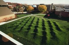 mogul landscape  Kelly Savino  It's Wave Field by Maya Lin, the woman who designed the Vietnam memorial wall. It's at U of Michigan.