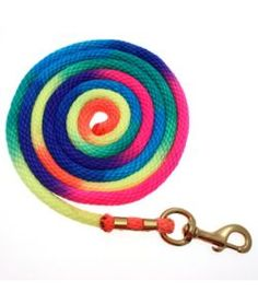Basic Rainbow Poly Lead Rope with Bolt Snap