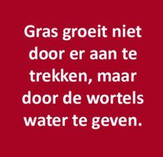 """""""Gras groeit niet door er aan te trekken, maar door de wortels water te geven"""""""