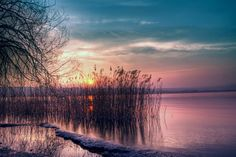Twilight Beautiful Landscape Quiet Lake Reed Sunset wallpapers