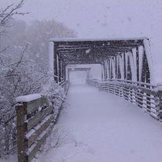 Ozaukee County, Wisconsin - Interurban Bike Trail - Photos - Winter snow on the Interurban Bridge I Love Winter, Winter Snow, Old Bridges, Winter Photos, Winter Beauty, Cool Landscapes, Bike Trails, Covered Bridges, Winter Scenes