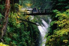 Olympic National Park, Washington  Sold duc waerfalls