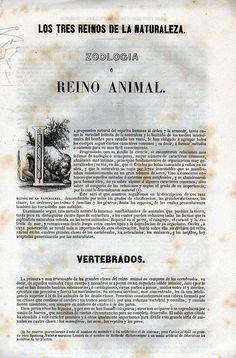 Los Tres Reinos de la Naturaleza. Zoología o Reino Animal. Buffon Historia Natural los Tres Reinos de la Naturaleza