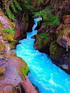 The blue water of Glacier National Park Montana!  Love this place!